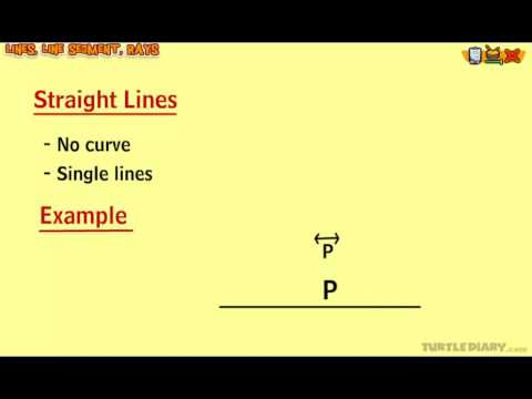 Lines – Perpendicular, Intersecting, Parallel – Math Lesson for Grade 3