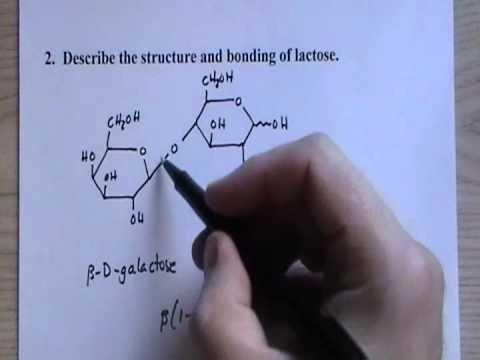 CHEM 1060 Lecture 054 Disaccharides