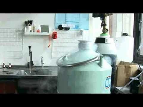 Nitrogen – Periodic Table of Videos