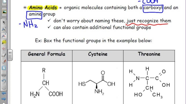 Organic Chemistry: Recognizing Amino Acids