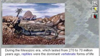 Biology: Vertebrates: Introduction to the Reptiles