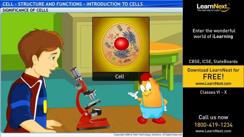 Cell – Structure and Functions – Introduction to Cells – Science – Class 8