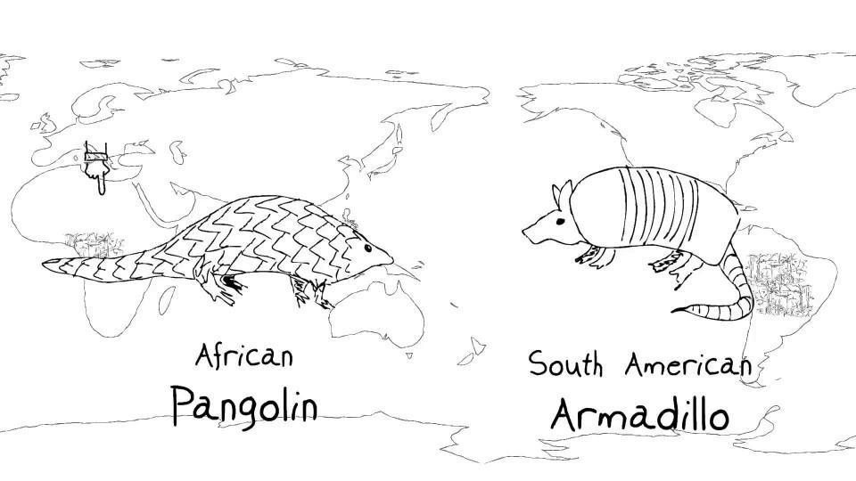 Ecosystem biodiversity