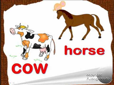 English lesson, farm animal vocabulary, ESL kids lesson.wmv