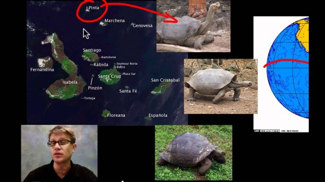 Evidence of Evolution: