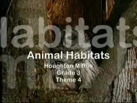 Grade 3, Theme 4, Animal Habitats.wmv