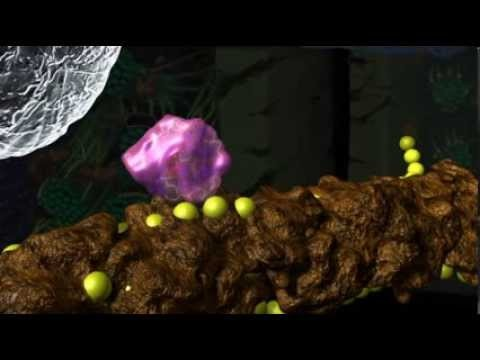 How Decomposition Works Part 2