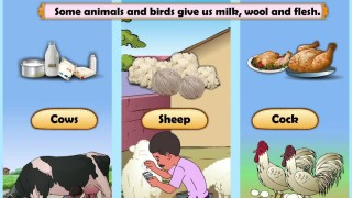 Learn Grade 2 – EVS – Natural Resources