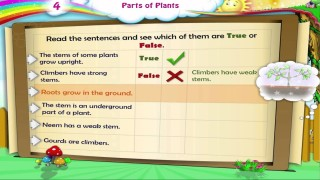 Learn Grade 3 – Science – Parts of Plants