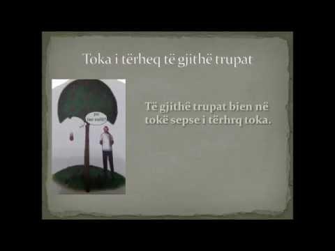 Pesha dhe rënia e lirë e trupave, Erza Kiçmari, kl 9, Prof Shqipe Hoxha – Llonçari