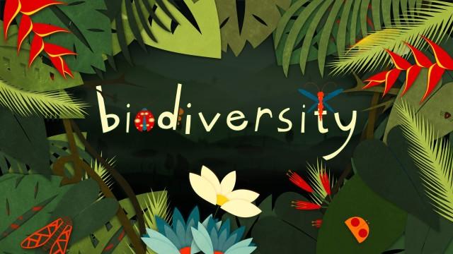 Why is biodiversity so important? – Kim Preshoff