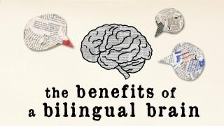 The benefits of a bilingual brain – Mia Nacamulli