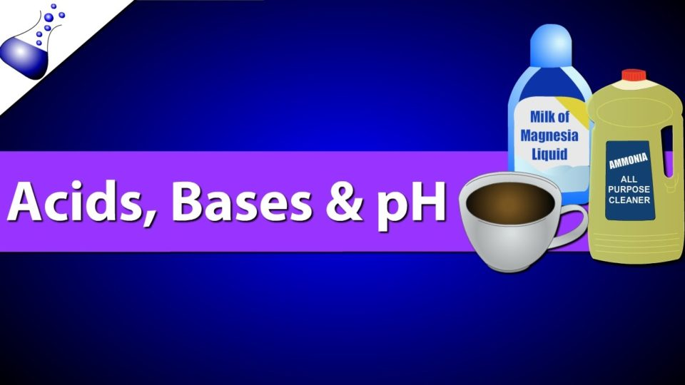 Acids, Bases and pH