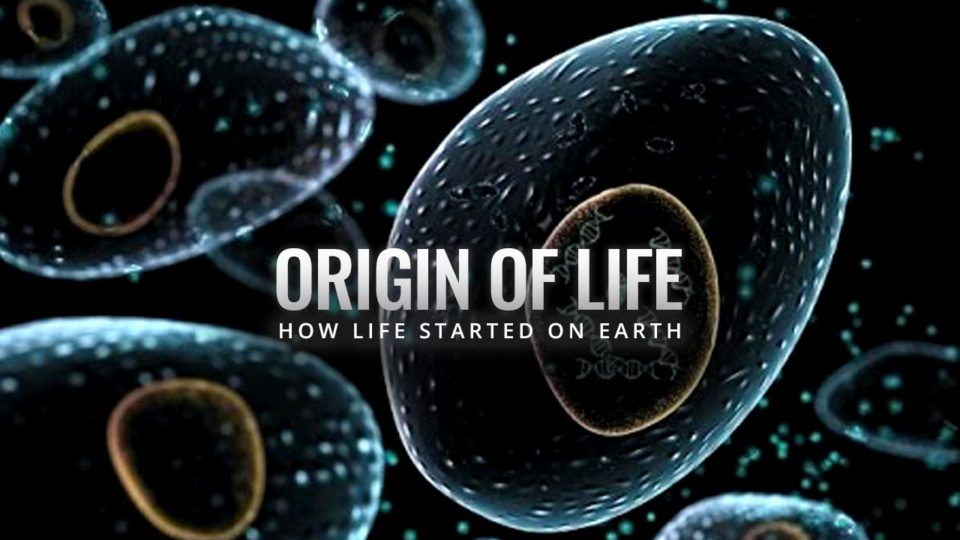 Origin of Life – How Life Started on Earth