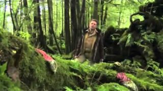 The Magical Forest (BBC Plants Documentary)