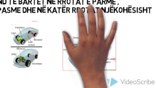 Sistemi i Transmisionit dhe Sistemi Mbështetës Rinor Rexhepi Rijad Krasniqi IX7 Prof Kimete Dida