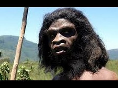 Ape To Man: Evolution Documentary History Channel