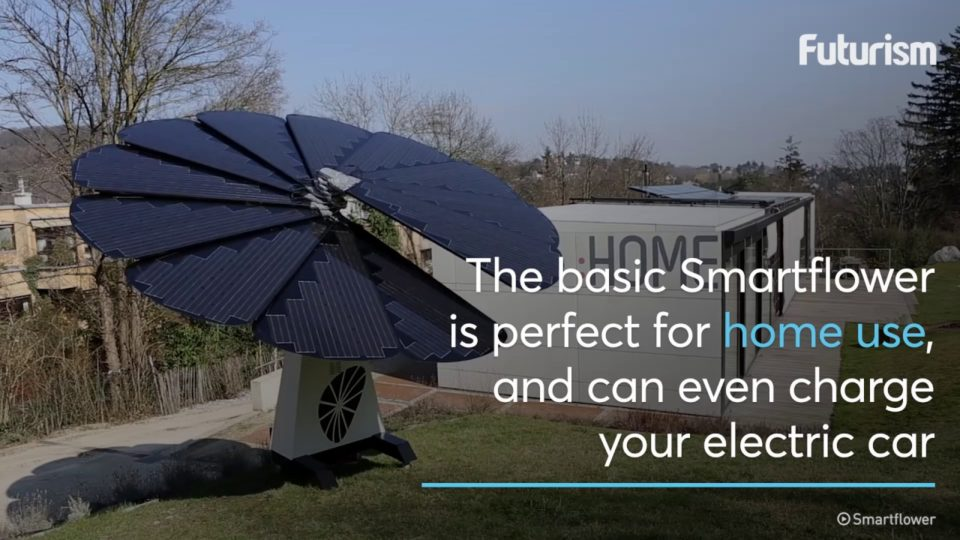 Power Your Home and Car With Help from a Flower
