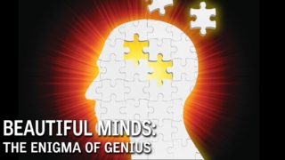 Beautiful Minds: The Enigma of Genius
