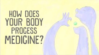 How does your body process medicine? – Céline Valéry