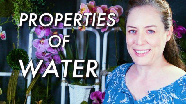 Properties of Water | Hydrogen Bonding in Water | Biology | Biochemistry
