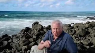 David Attenborough's Galapagos David Attenborough's Galapagos Episode 2 Adaptation