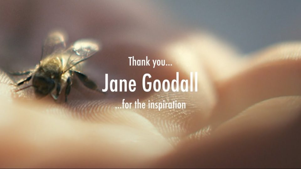 JANE GOODALL – Mother Earth