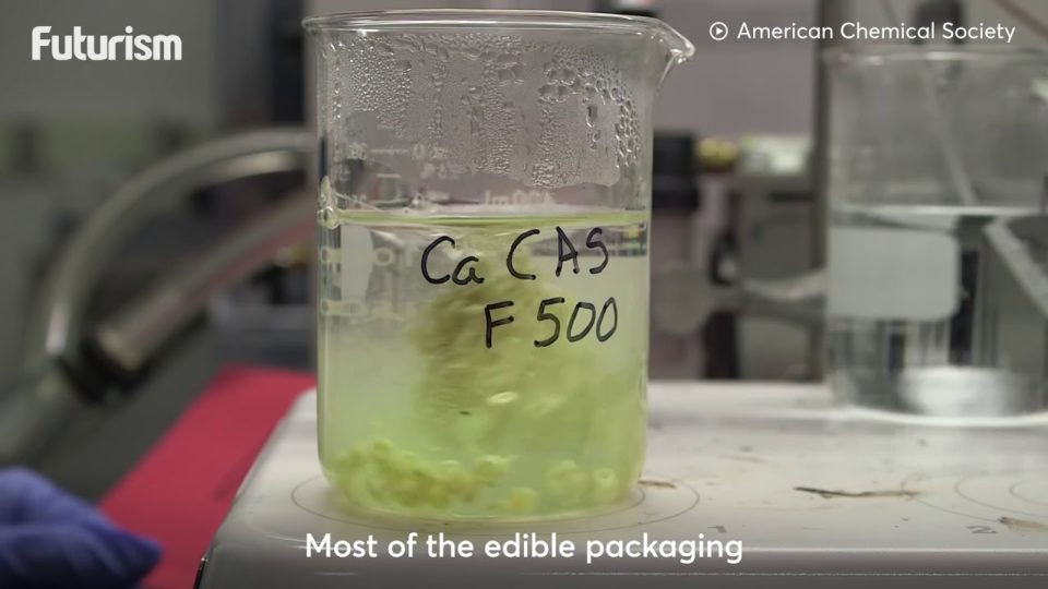 Casein-based Edible Food Packaging: Futurism Originals
