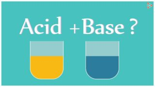 Acids and Bases – Reaction with each other! – CBSE 10