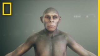 Human Origins 101 | National Geographic
