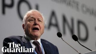 Continuation of civilisation is in your hands,' Attenborough tells world leaders
