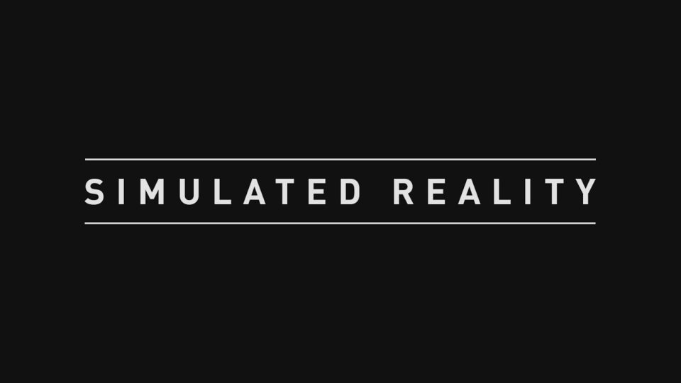 Simulated Reality