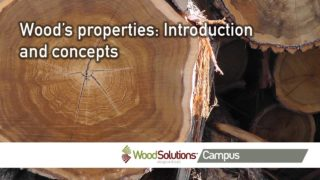 Wood's properties: Introduction and concepts