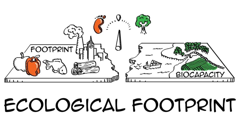 Ecological footprint: Do we fit on our planet?