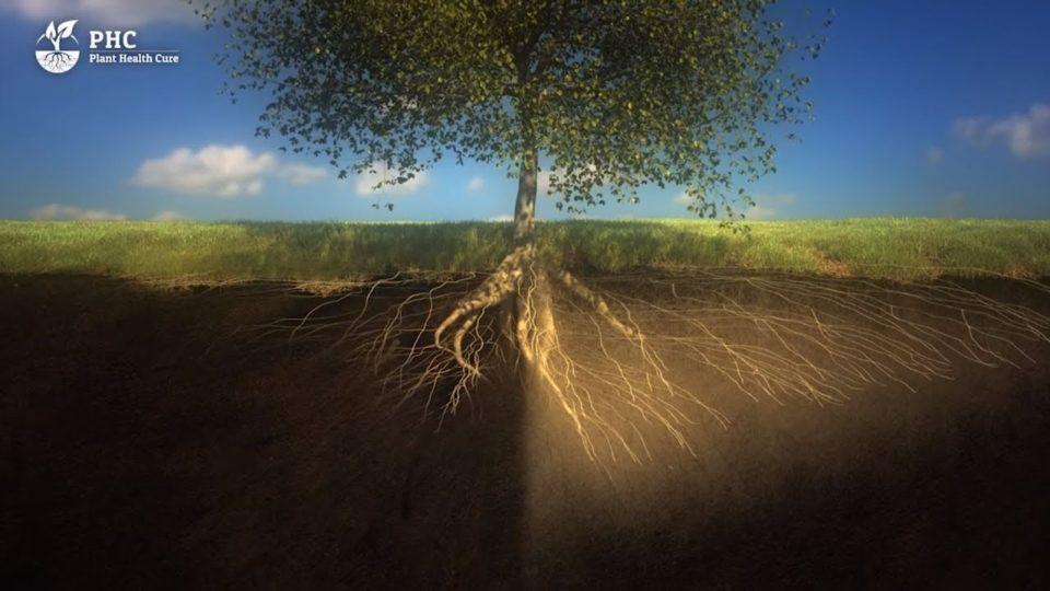 PHC Film: Soil is a living organism